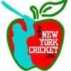 New York Cricket